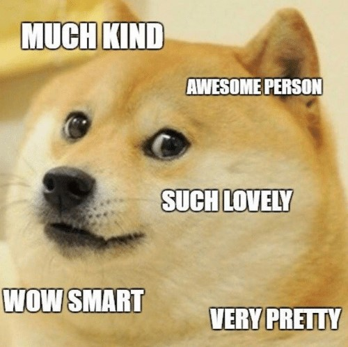 much-kind-awesome-person-such-lovely-wow-smart-very-pretty-15584310